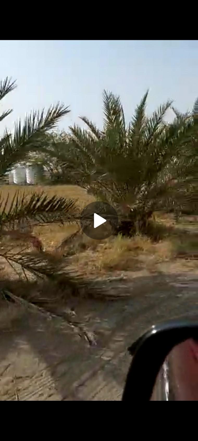 ارض للبيع في الذيد - الشارقه