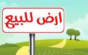 ارض للبيع في الغبيبه - الشارقه