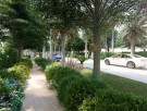 ارض للبيع في غنتوت - ابوظبي